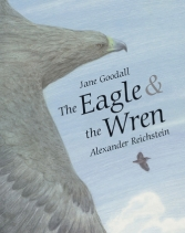 eagle-and-wren